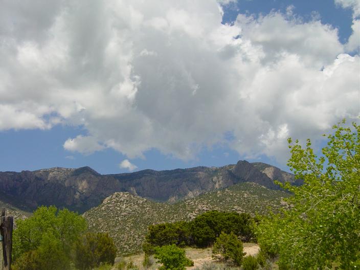 Rising from the Desert Mountain: Herbs of the Sandias