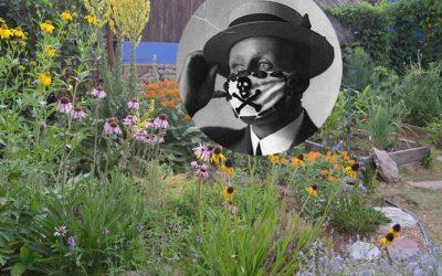Pandemic Garden